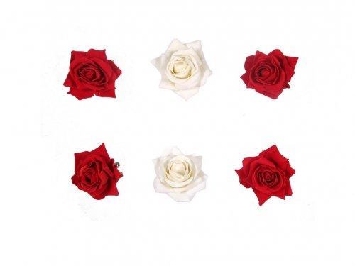 Κλιπ Τριαντάφυλλο